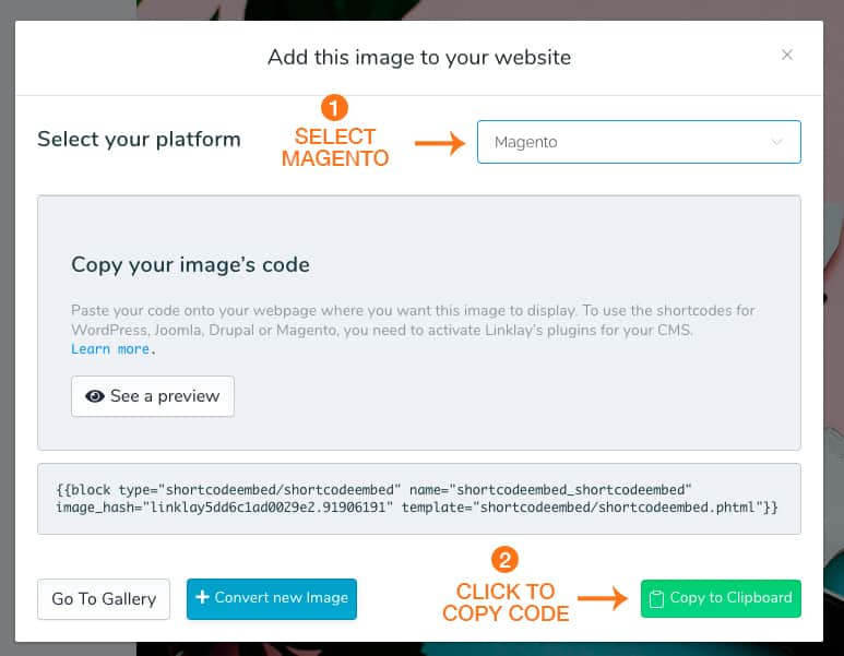 screenshot of magento extention copy code popup